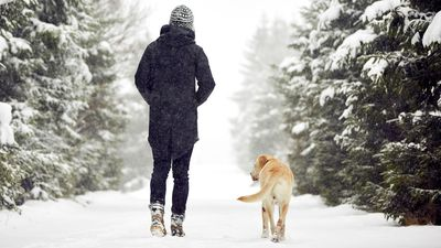 Struggling to stay active and motivated in winter? Get a dog
