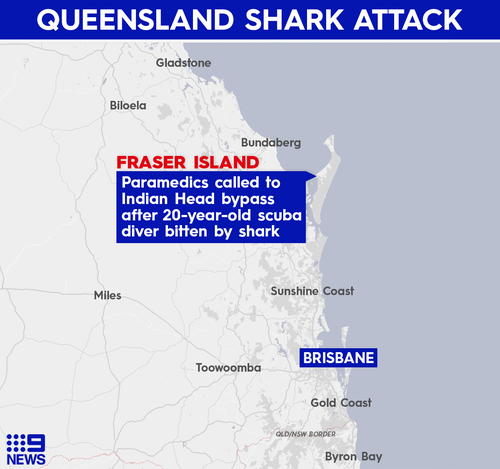 Scuba diver killed in Australia shark attack