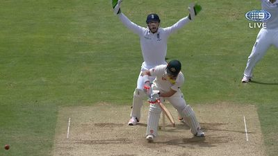 Warner falls LBW to Ali