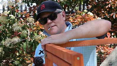 Prime Minister Scott Morrison builds a chicken coop for his family.