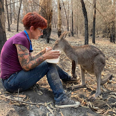 Since the fires Ms Harvey has been working to identify animals in need in the bush.