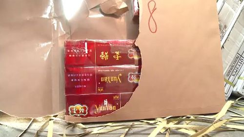 Authorities began tracking the Chinese nationals earlier this year after identifying an illegal tobacco importation network.