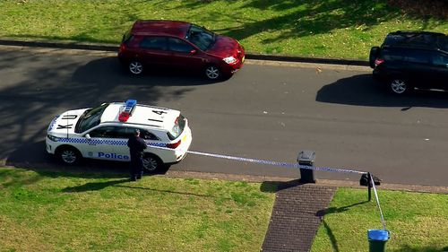 Man dies falling from tree in St Ives on Sydney's upper north shore