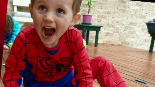 William, then aged three, vanished from his grandmother's home in 2014 on the NSW North Coast.