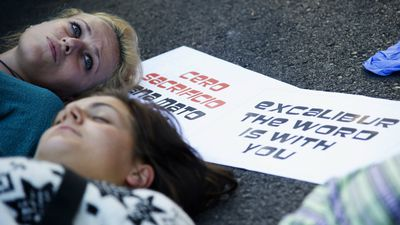 Animal rights activists lie on the road in an attempt to block the van carrying Excalibur. (AFP)