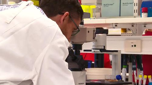 Queensland scientists discover new test that could simplify finding deadly melanoma