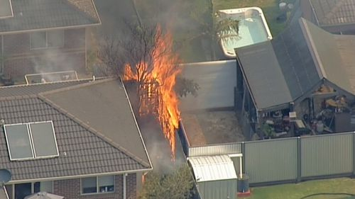 A number of homes were in the path of the blaze. (9NEWS)