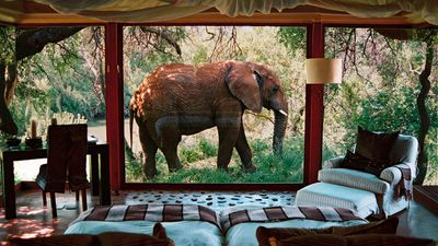 <strong>Sanctuary Makanyane Safari Lodge, South Africa</strong>