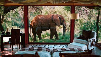<strong>Sanctuary Makanyane Safari Lodge, South Africa</strong>