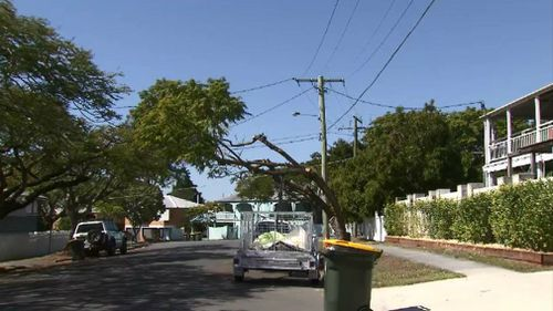 Residents aren't impressed with the work of Energex contractors.