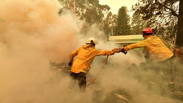 Firefighters hose down a burning woodpile during a bushfire in Werombi, 50km south west of Sydney, Friday, December 6, 2019.