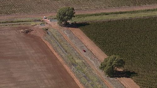 The car was found in a paddock west of Leeton. (9NEWS Choppercam)