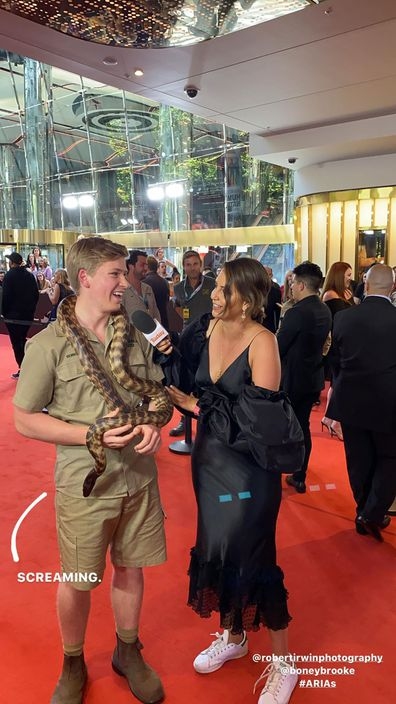 Robert Irwin at the ARIAs
