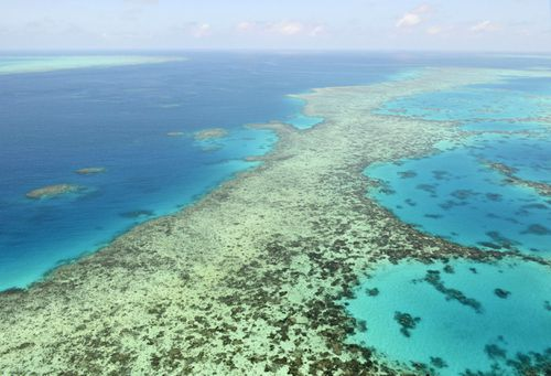 The Opposition is demanding an explanation from the government over the grant, which is meant to help save the reef.