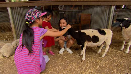 Children enjoy a petting zoo.
