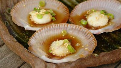 """Recipe:<a href=""""http://kitchen.nine.com.au/2017/01/24/11/16/steamed-saucer-scallops-with-green-onion-and-ginger"""" target=""""_top"""">Steamed saucer scallops with green onion and ginger</a>"""