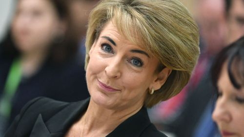 The Employment Minister's colleagues have stood by her this morning. (AAP)