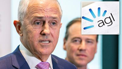 Turnbull's promise to squash power prices buoys popularity