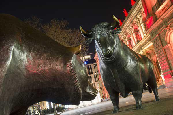 Bull and bear