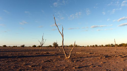 Australia is battling the worst drought in over one hundred years.