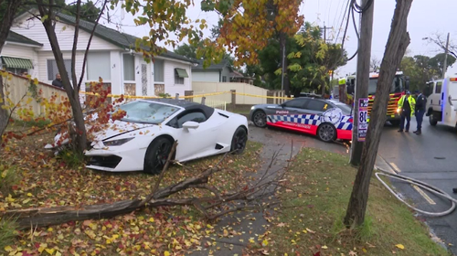 A Lamborghini is believed to have hit an aquaplane before slamming into a tree in Fairfield.