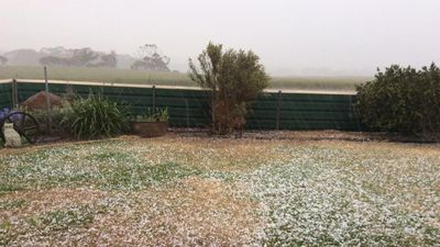 Hail in Campoona. (Nat Roberts/Facebook)