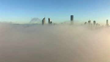 A thick layer of fog has shrouded the Brisbane skyline.