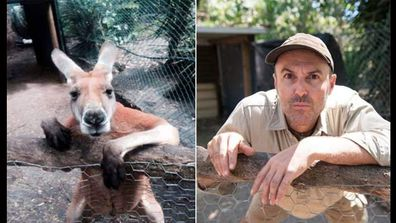 """<p _tmplitem=""""1"""">A West Australian zookeeper is encouraging his animal-loving peers to get in on some silly and good-natured fun. </p><p _tmplitem=""""1""""> <a _tmplitem=""""1"""" href=""""http://www.peelzoo.com.au/"""">Peel Zoo's</a> David Cobbold and colleagues have been having a chuckle embracing the #zookeepersasanimals social media movement, taking happy snaps of themselves imitating their animal friends. </p><p _tmplitem=""""1""""> The movement has seen dozens of zoo and animal keepers from around the world striking the exact same poses as kangaroos, wombats, koalas and lamas. </p><p _tmplitem=""""1"""">  The trend has proved a big hit on Facebook and Twitter, with zookeepers taking time out to see how well they can mimic the poses and expressions of the critters under their care. </p><p _tmplitem=""""1""""> Mr Cobbold says the photography sessions are a great team-building exercise and urges other zoos to hold their own. </p><p _tmplitem=""""1""""> """"Zookeepers are a pretty dedicated lot, so it's been great to have a break from duties to just have a laugh,"""" he told AAP. </p><p _tmplitem=""""1""""> </p><p>Take a look through for more animal fun pics. (Via Twitter and Facebook)</p>"""