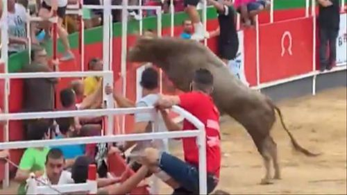 Nineteen people were injured when a bull jumped a barrier at a festival in Vidreres, Spain.