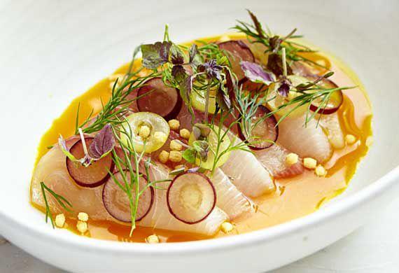 Kingfish recipes