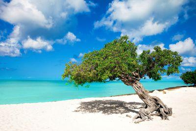 <strong>4. Eagle Beach, Aruba</strong>