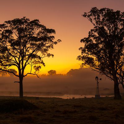 Orange NSW