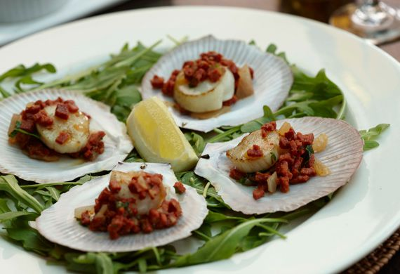 Grilled scallops on the shell with sucuk, coriander and lemon