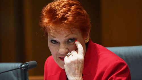 LNP can't win without Hanson: Newman