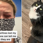 American Airlines lost woman's cats in cross-country flight