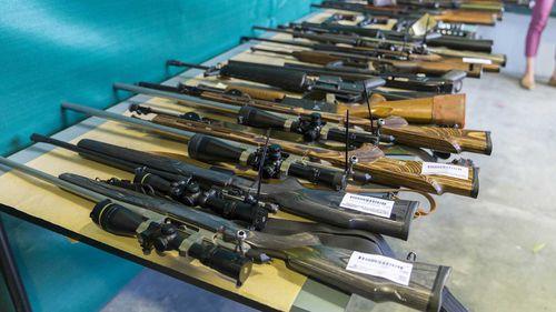 One Nation sought US funding to loosen Australian gun laws.