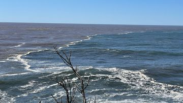 Floodwaters meet the ocean in Moruya on the NSW South Coast.