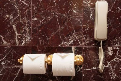 1. Toilet phones