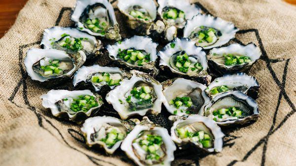 Massimo Mele oysters recipe