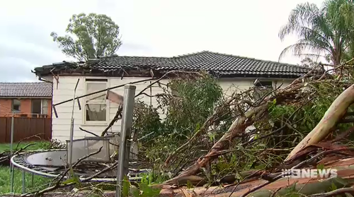 Thousands left without power after storm sweeps through Sydney