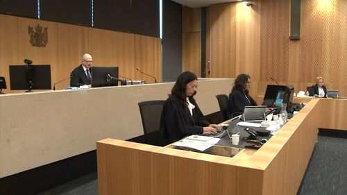 Brenton Harrison is appearing in Christchurch's High Court
