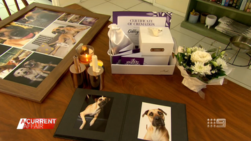 The funeral service giving Aussie family pets a royal send-off