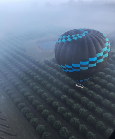 Ballooning in the Hunter Valley over a vineyard