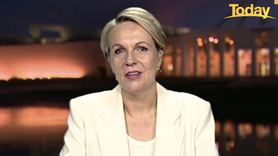 Tanya Plibersek said she had to tell Craig Kelly to pull his head in.