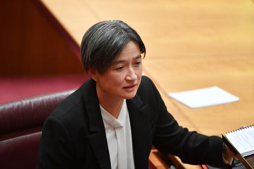 Senator Penny Wong is unsure of whether an audit is the best way forward. (AAP)