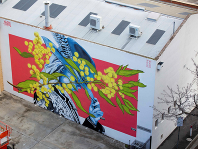 Explore Bendigo's burgeoning street art scene with a talented local artist from the Nacho Station crew.