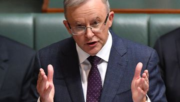 Anthony Albanese insists the Upper Hunter poll was not a test of his leadership.