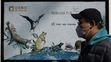 Propaganda posters promote the protection of wildlife after authorities crackdown on animal markets following the coronavirus outbreak.