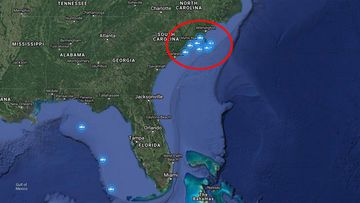 A screenshot showing the cluster of tagged sharks.