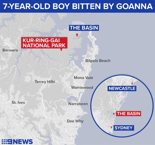 The incident took place at The Basin campground, near Pittwater. (9NEWS)